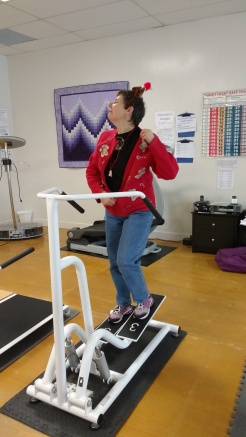 On the third day of Christmas Linda gave to me . . . a stepper.